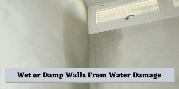 Wet or Damp Walls From Water Damage