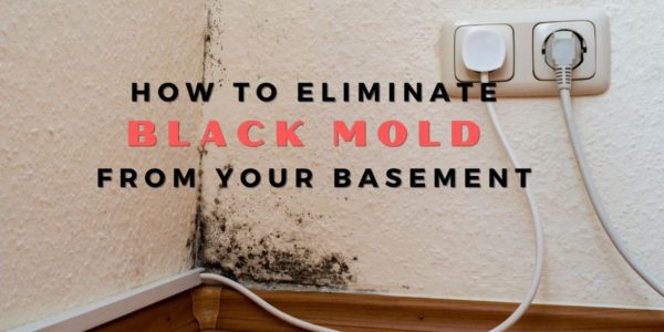 How To Eliminate Black Mold From Your Basement