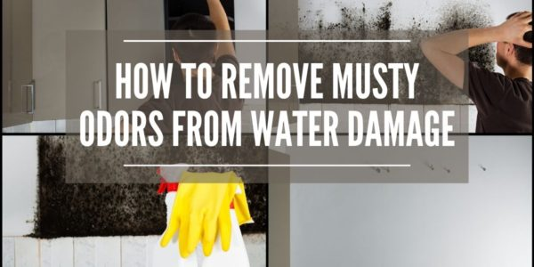 How to Remove Musty Odors From Water Damage